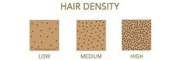 Hair Density from low to high for the How to Determine Your Hair Type Blog Post on The LOVELEELERA Blog