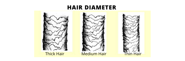 Hair Diameter From Thick to Thin