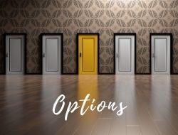 Career Options from The LOVELEELERA Blog